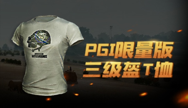 PGI T-Shirt Limit PuBG